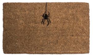 Spider Handwoven Coconut Fiber Doormat